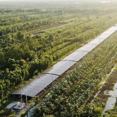 Hệ thống năng lượng mặt trời áp mái kết hợp trang trại nông nghiệp tại Tỉnh Hậu Giang